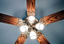 best ceiling fan with lights