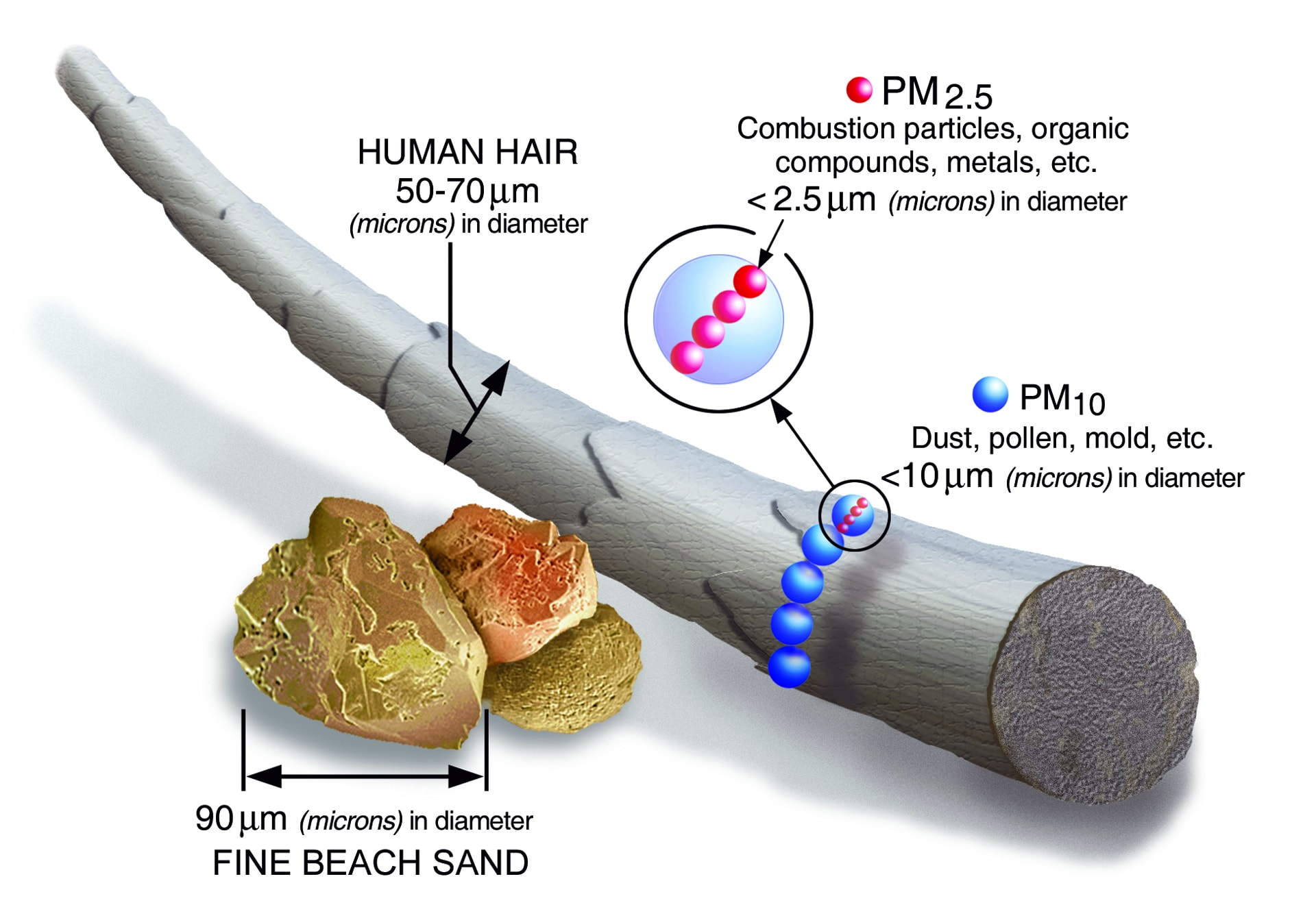 PM 2.5 and PM10